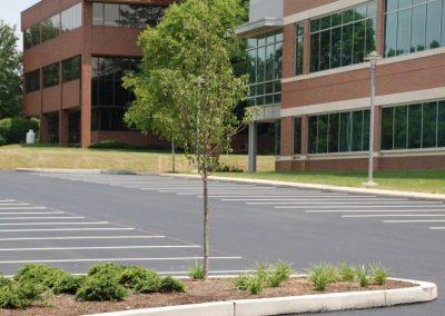 asphalt-paving-11